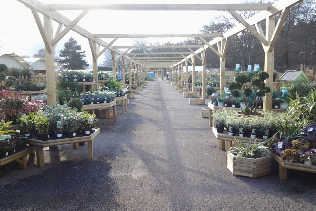 Plant Display Stands
