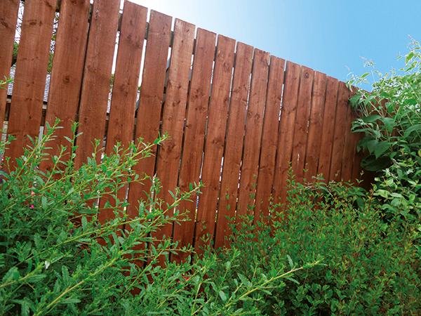 Tanatone treated brown fence
